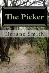 the_picker_cover_for_kindle